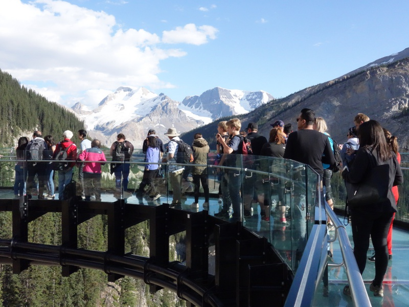 Glacier Skywalk Columbia Icefields