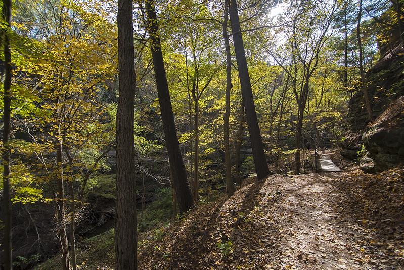 Autum Trail