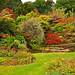 Autumn Rockery - Mount Stewart.