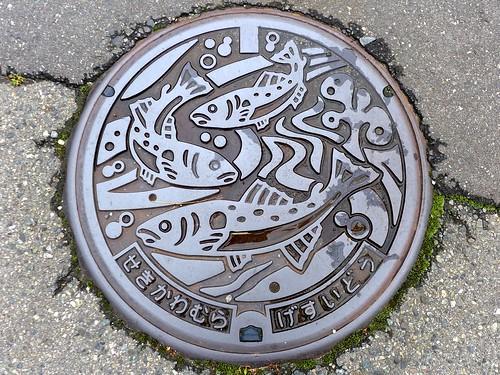 Sekikawa Nigata, manhole cover (新潟県関川村のマンホール)