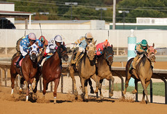 23 September 2017 -Charles Town Races (38)
