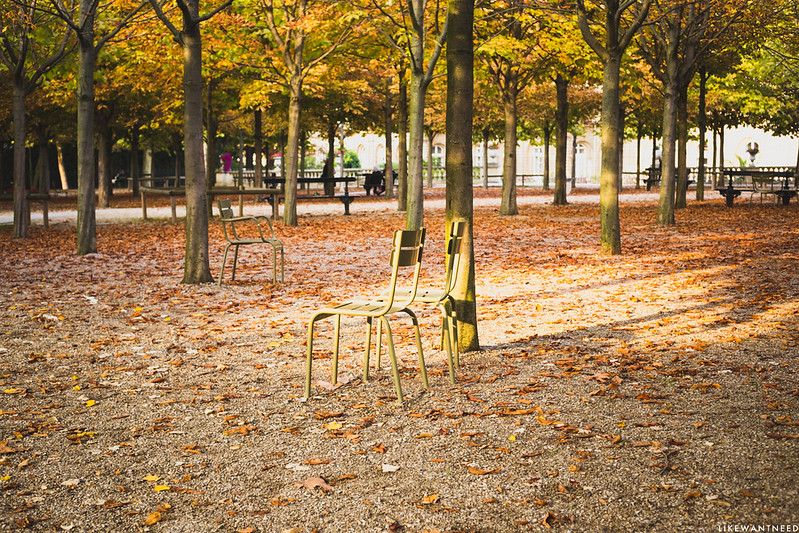 Chairs, Jardin du Luxembourg