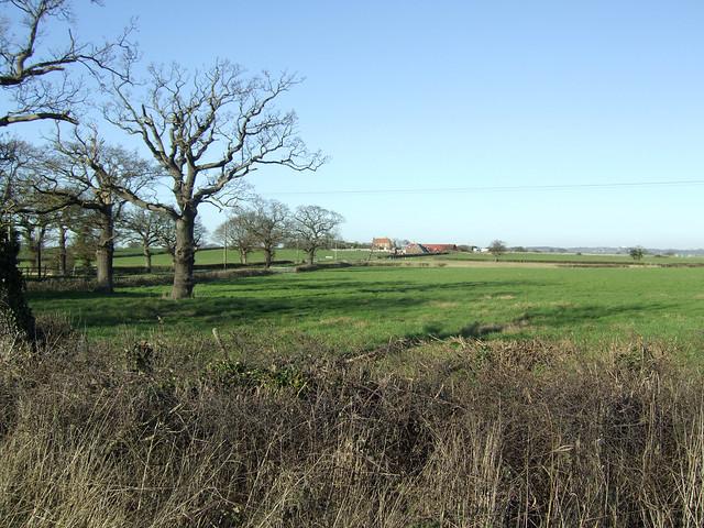 Near South Fambridge