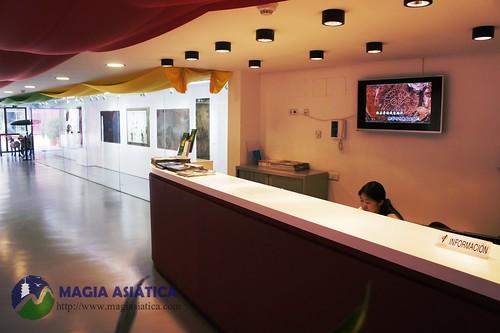 Centro Cultural Chino Madrid 3 Magiasiatica