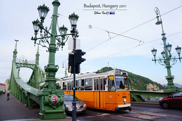 2017 Europe Budapest 06 Liberty Bridge 02