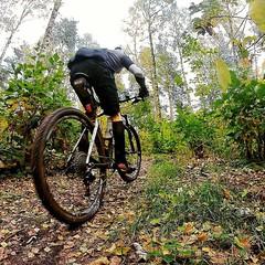 Auf der Suche nach Sonnenschein. Mountain Biking im Herbst in Berlin. Searching for sunshine. This is fall biking in Berlin. #konstructive.de #mountainbike #bike #biking #mountainbiking #whereweride #mtb #revolutionsports.eu #carbonbike #fall #bikelove #g