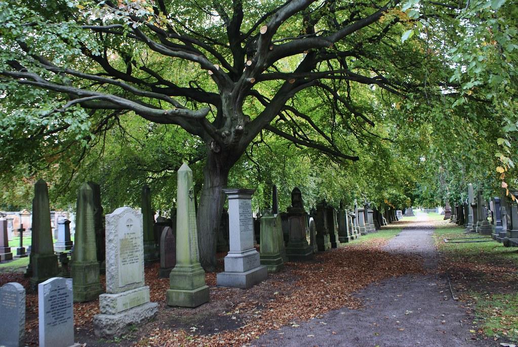 Dans les allées du Dean Cemetery à Edimbourg.
