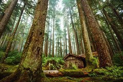 Sol Duc Shelter