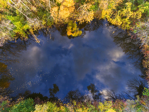 thursday tbt pond aerial fall cool random lol awesome reflection evening fun farm home skaneateles flx fingerlakes nature landscape peace peaceful aerialphotography dronephotography drone drones dji djiphantom4 phantom4 2017