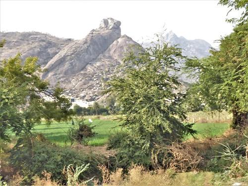 i-jodhpur-mount abu-route  (44)