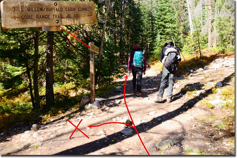 Buffalo CabinTrail & Gore Range Trail fork