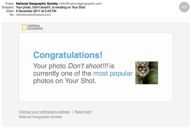 Your photo Dont shoot is trending on Your Shot
