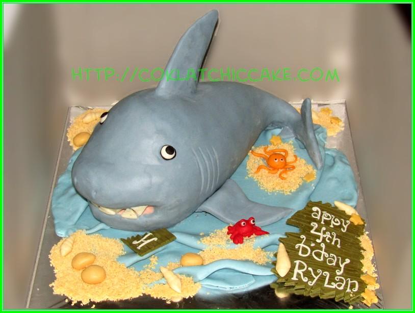 Cake Shark RYLAN