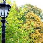 Autumn light in Preston