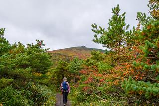 安達太良山を眺めながら木道を行く