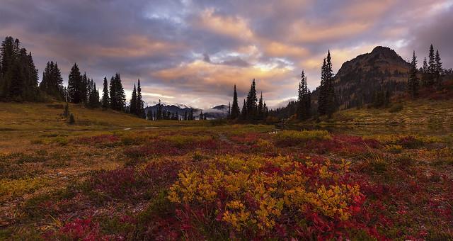 Fall Colors in the Mountais (Mt Rainier NP, WA)