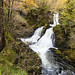 Colwith Force