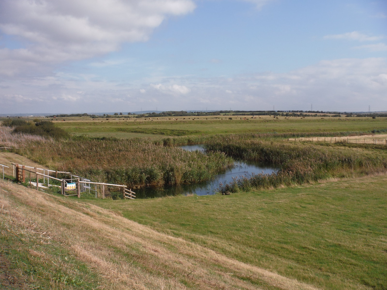 The Luddenham Cut by its sluice SWC Walk 299 - Teynham to Faversham