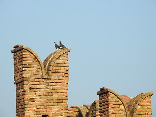 Castell'Arquato (Piacenza)