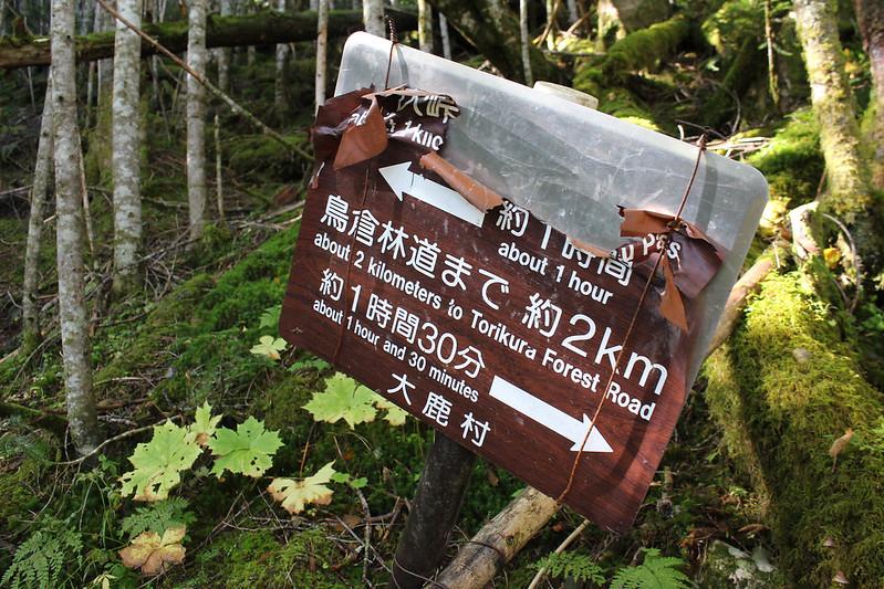 20170924-塩見岳(kuma)_0023.jpg