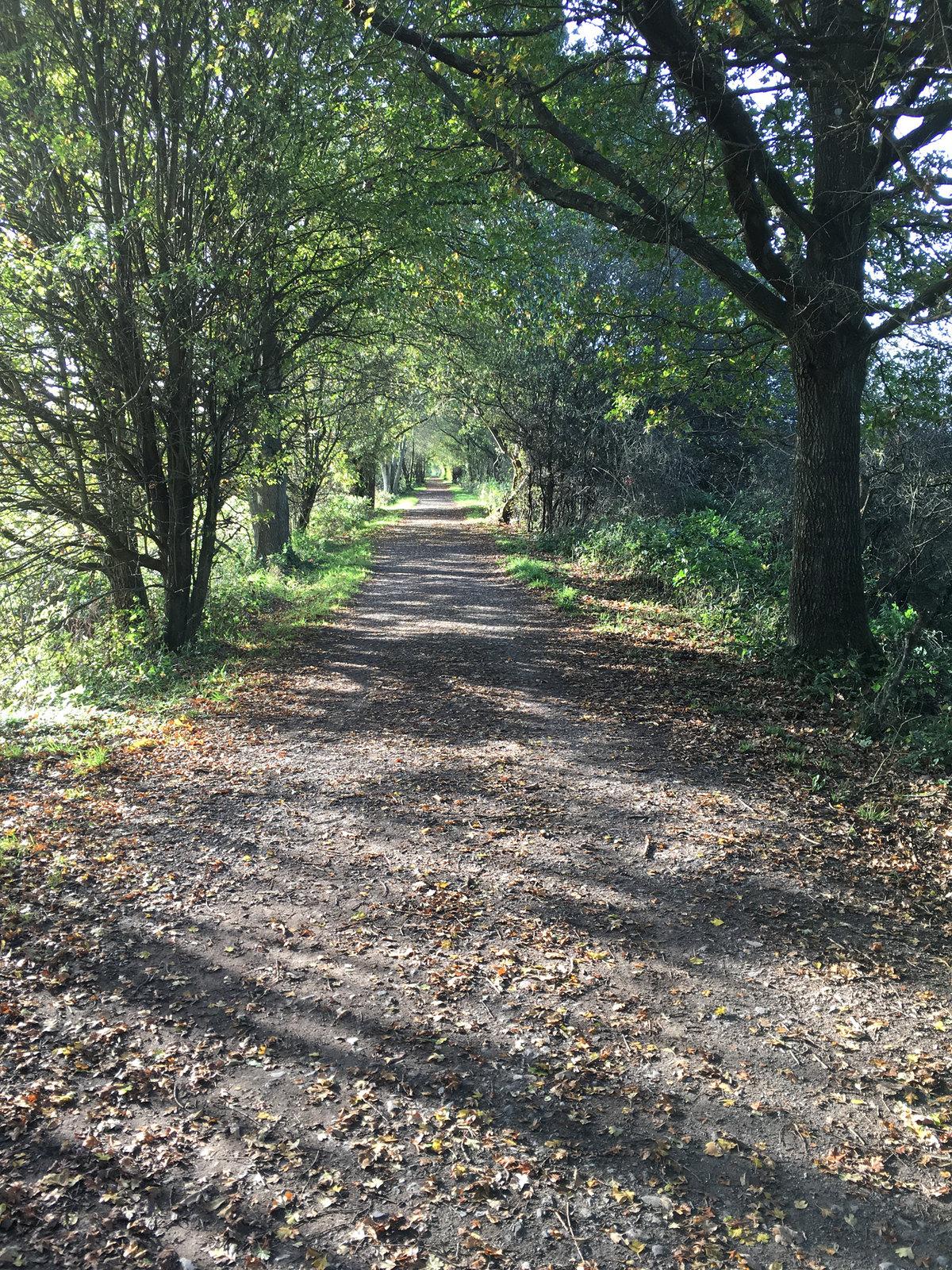 18 Ashurst Circular Walk