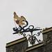 St Michael & All Angels Church, Hawkshead, Cumbria  7