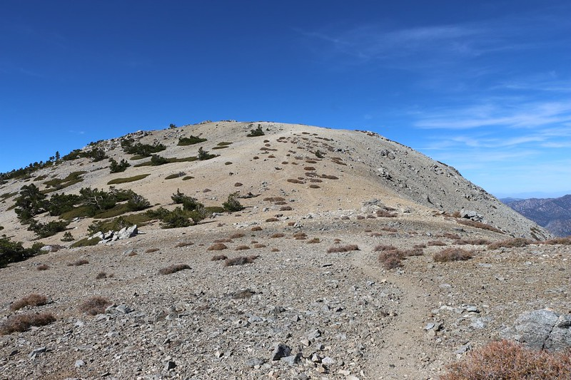 We decide to bag West Baldy, as long as we hiked all this way
