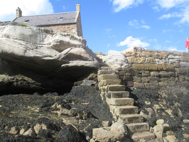 steps  at Cove