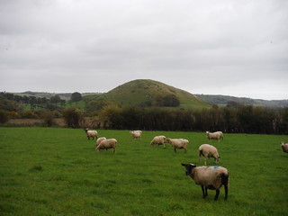 Summerhouse Hill from Bluehouse Wood