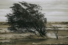 An Erie Fall Storm