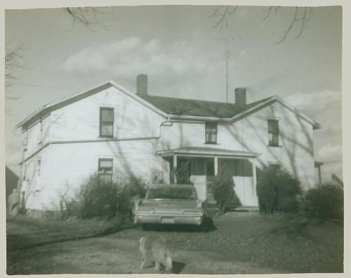 House, car, dog