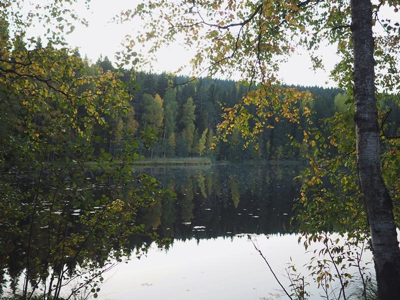 suomenluonto-syksy