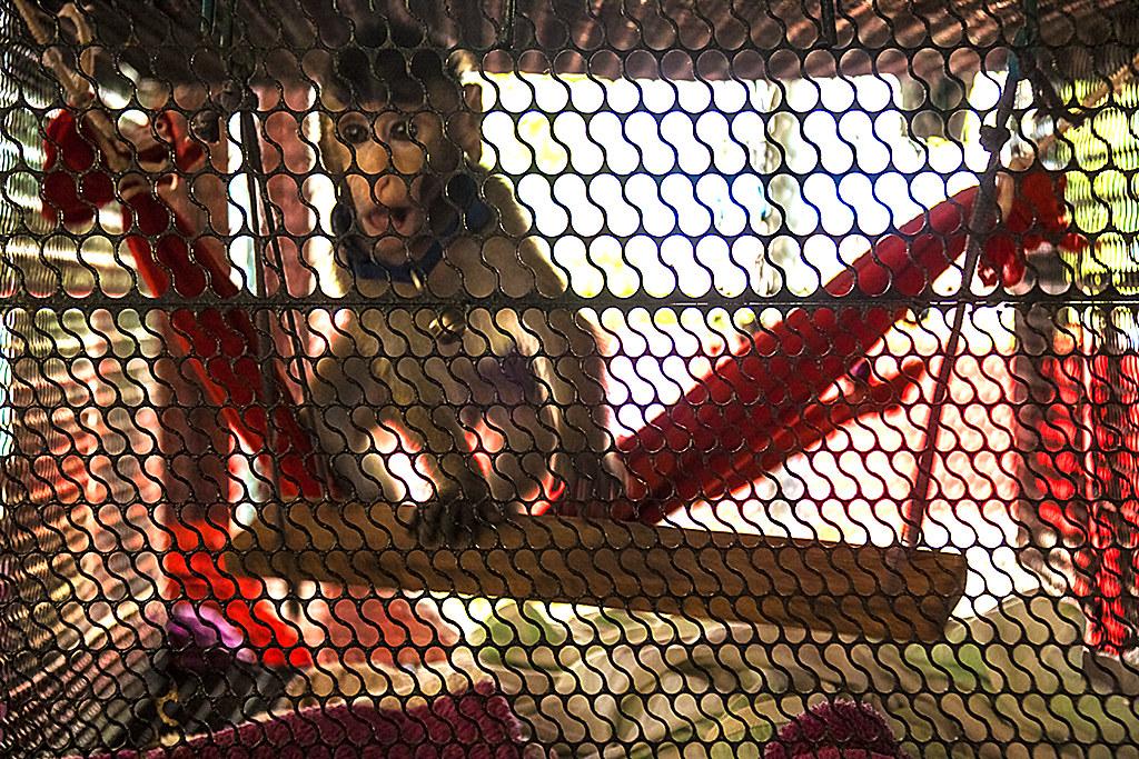 Small monkey--Binh Chau