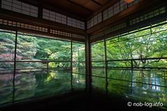 京都インスタ映えの旅 #3 瑠璃光院