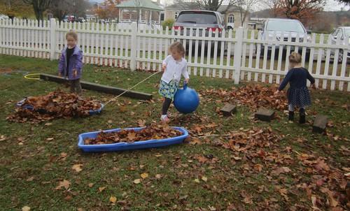 hauling leaves