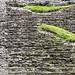 Palenque, gupo Norte por bruno vanbesien