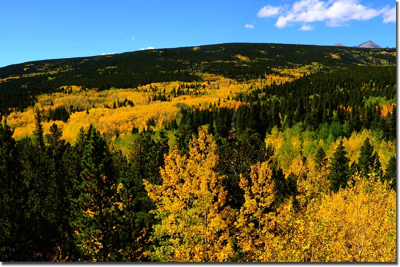 Peak to Peak Scenic Byway in Fall, Colorado (11)
