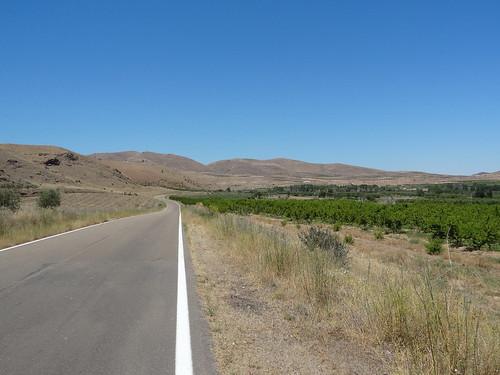 483_Valle del Río Jalón