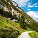 hiking way