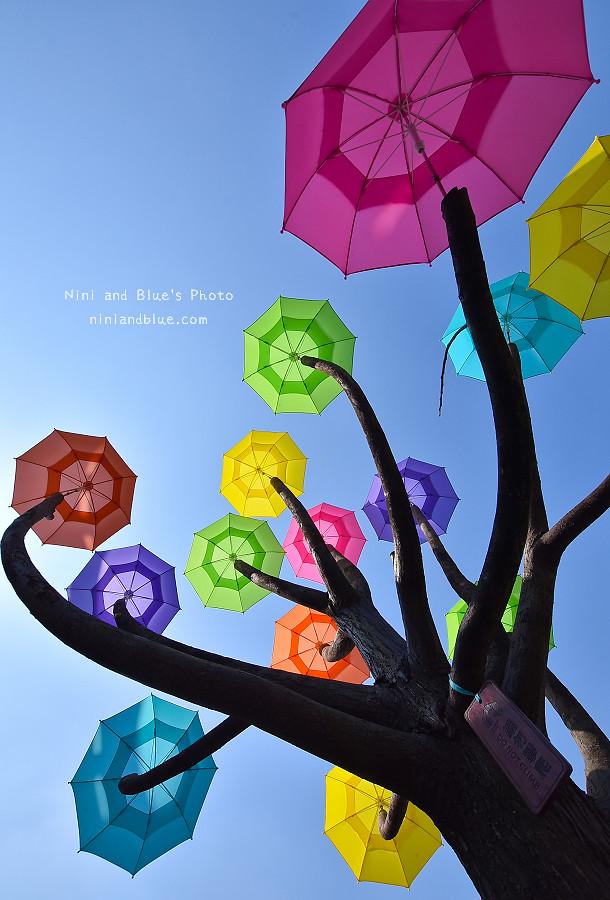 彰化和美景點卡里善之樹雨傘14