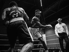 Best of - Boxing in B&W