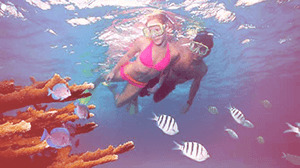When It Comes To Snorkel Expeditions, We Can Guide You On The Best Trips.