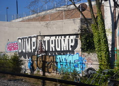 ashes DUMP TRUMP