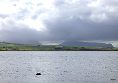 Beside The Loch Of Stenness In Orkney