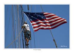 Tall Ships 32
