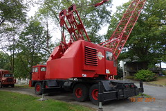 Cranes at Gerhard's 2017