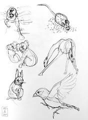 Gesture drawings Day 13