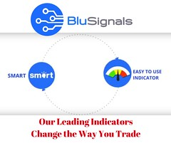 About BluSignals