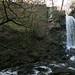Melincourt Falls (3)