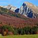 Autunno - Autumn by Flavio.Bino.92